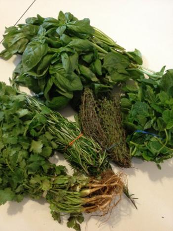 Herbs-2-photo-1