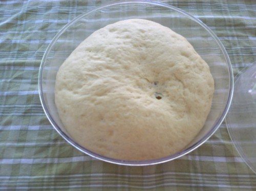 Dough proving in the Fante's Fruit Ripener Bowl
