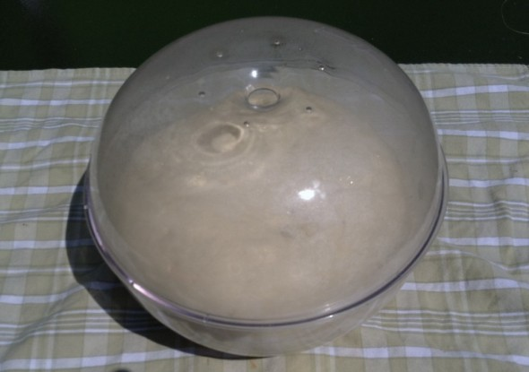 Dough in a covered bowl for the rising
