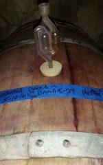 Wine Airlock